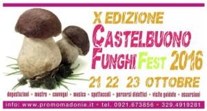 funghi fest