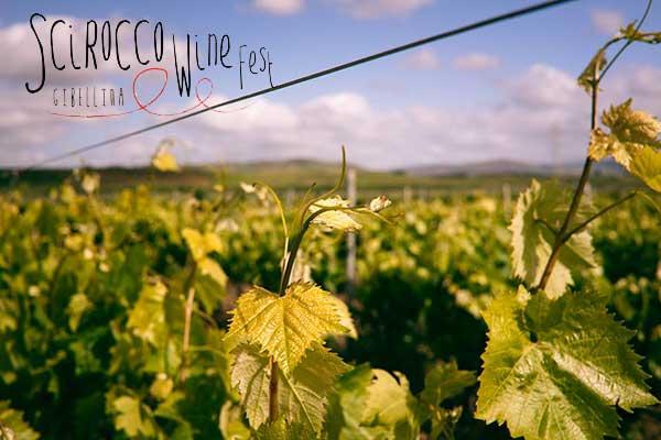 scirocco-winefest
